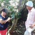 Contingencia Miviot evalúa caso de hermanos afectados por incendio en La Chorrera Un informe social y técnico realizó el personal de la regional de La Chorrera del Ministerio de Vivienda […]