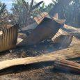 En La Chorrera Evalúan respuestas a familia que lo perdió todo en un incendio Colaboradores de la regional del Ministerio de Vivienda y Ordenamiento Territorial (Miviot) de La Chorrera realizaron […]
